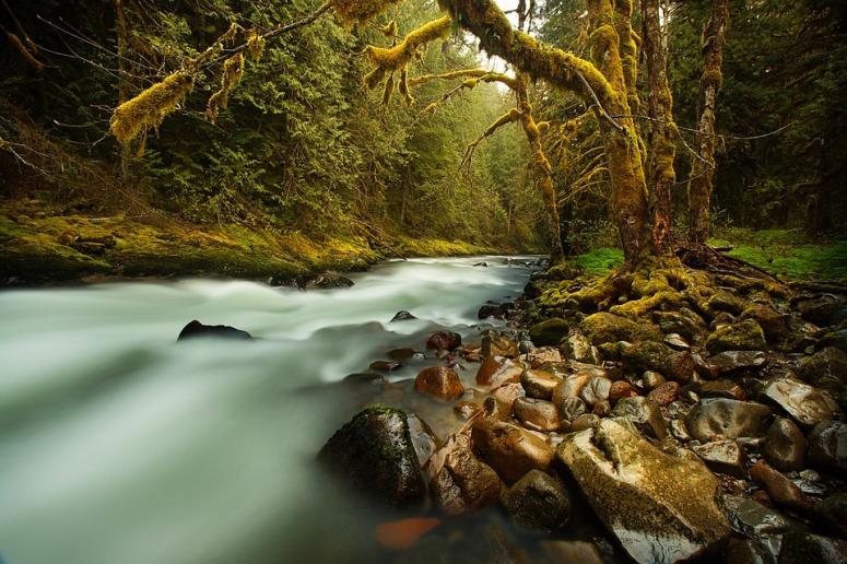 creek-731483_960_720