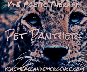V&E Poetic Therapy: Pet Panther