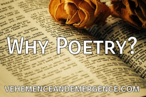 Poetry, rhythm, senses, expression, dance, energy, transcendence, book, dried flowers, blog, poet, writer, author, holistic