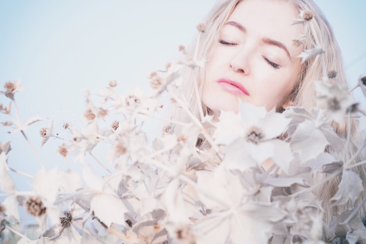 procrastinate, procrastinator, ADHD, anxiety, white flowers, woman flowers, peaceful, perfect, blog, marriage of oppositions, paradox
