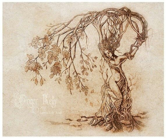 growth, tree, heart, poetry, ezra pound, a girl, poem, girl, woman, art, therapy, woman nature, girl nature, natural woman