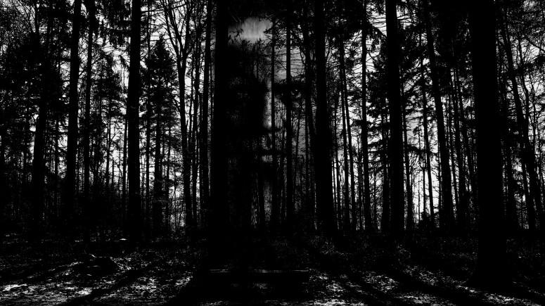 horror-2156302_1920.jpg