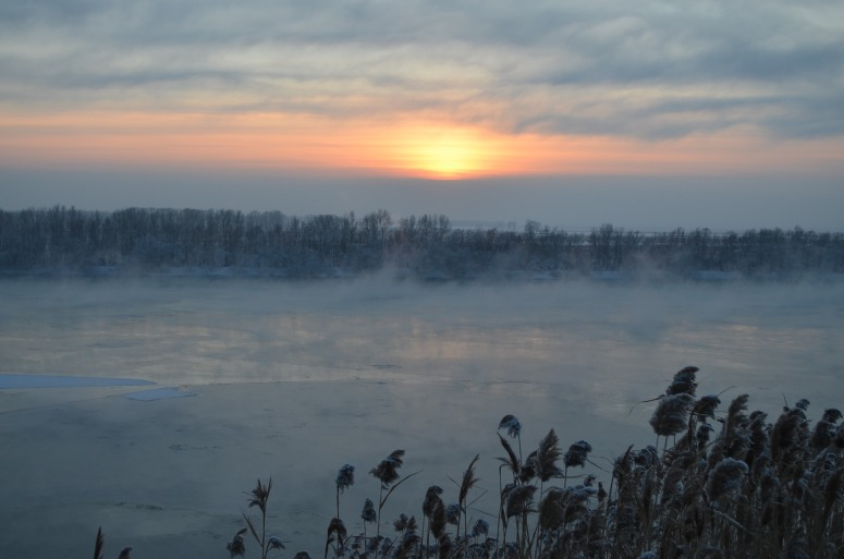 winter-2114584_1920.jpg