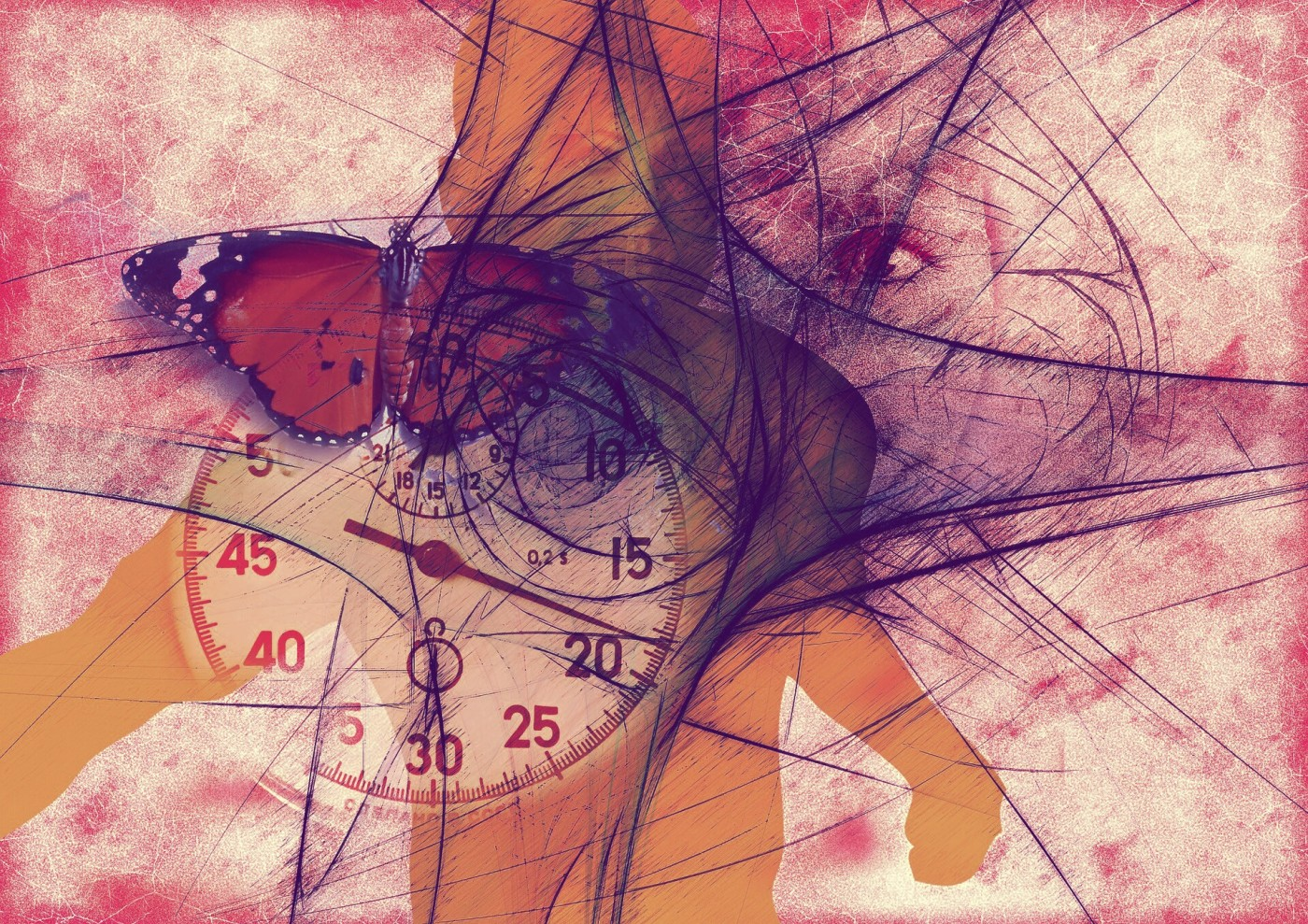 Marianne Moore, poem, butterfly, buddah, eye, clock, time, collage, poetic therapy, diligence, magic, flight, progress