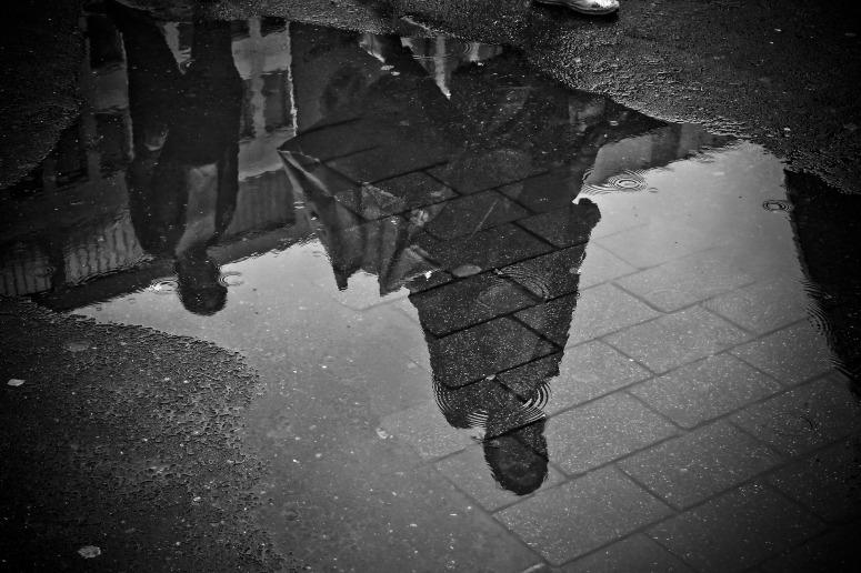 rain-2538429_1920.jpg
